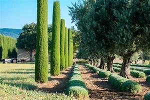 Mediterrane Bäume Winterhart : mediterraner garten schie b hl garten garten landschaftsbau ~ Frokenaadalensverden.com Haus und Dekorationen