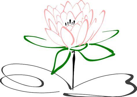 vector graphic lotus flower blossom plant