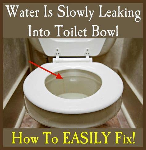 25+ Best Ideas About Leaking Toilet On Pinterest