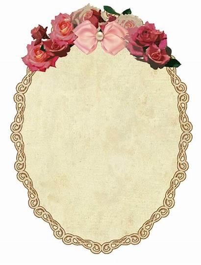 Frame Border Roses Transparent Oval Background Flower