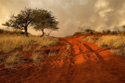 Namibia, Africa Wallpaper  Nature And Landscape
