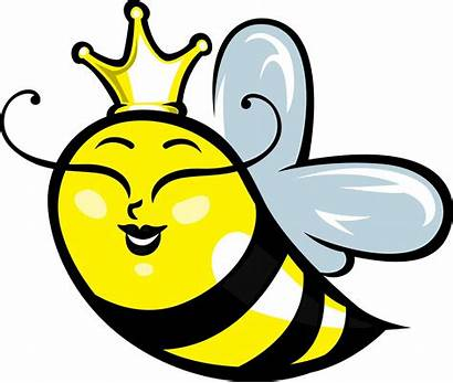 Bee Bumble Cartoon Queen Bumblebee Clip Clipart