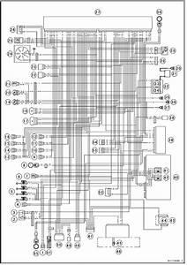 Kawasaki Ninja Service Manual  Dfi System Wiring Diagram  Kibs Equipped Models