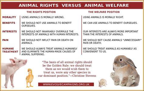 animal welfare quotes quotesgram
