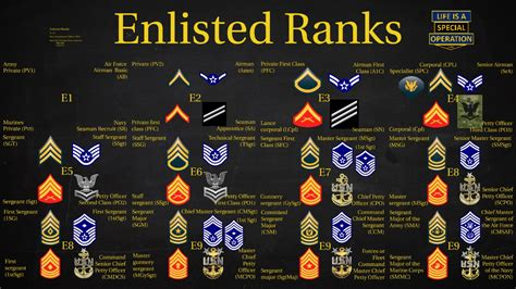 military  branches enlisted ranks explained