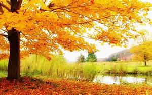 wallpapers: Autumn Scenery Desktop Wallpapers