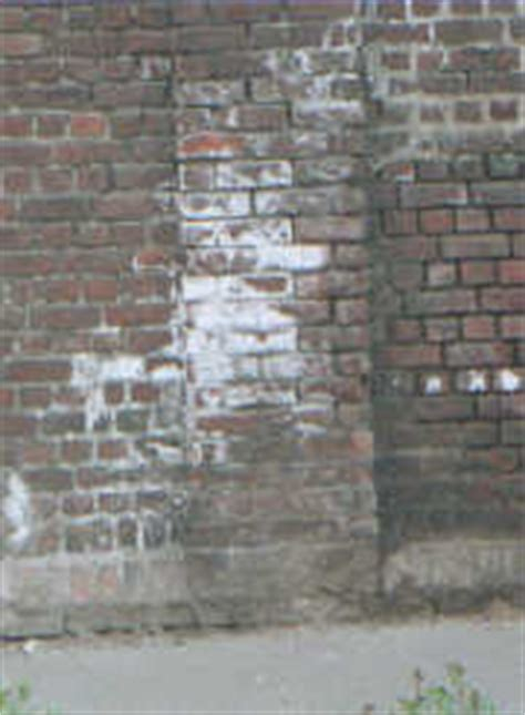 enlever la mousse sur un mur exterieur 28 images qui sait d ou ca vient et comment y rem 233