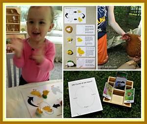 4 Montessori Gift Guide Units  U0026 Tons Of Printables