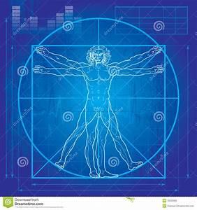 The Vitruvian Man  Blueprint Version  Editorial