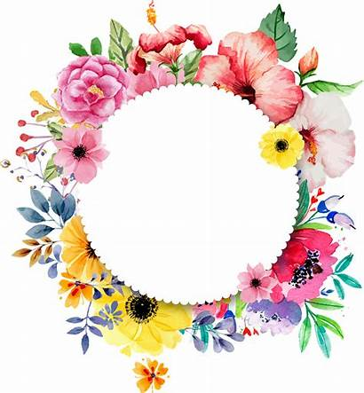Circle Flower Transparent Designs Clip Ageing Pngkey