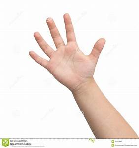 Hand Hand Of A Child Stock Photo Image: 35563940