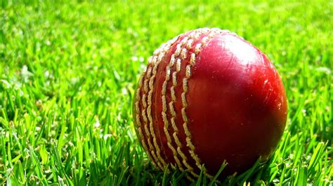 Cricket Images Cricket Wallpapers Best Images Hd Free
