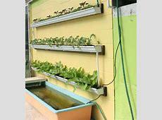 DIY Rain Gutter Aquaponic System Off Grid World