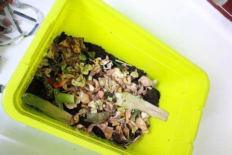 kompost selber machen diamonds are eben nicht zwangsl 228 ufig a best friend nix wurmkompost kompost und