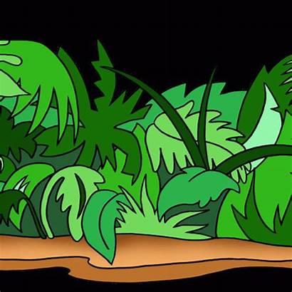 Jungle Clipart Panda Clip Downloads Space Photosynthesis