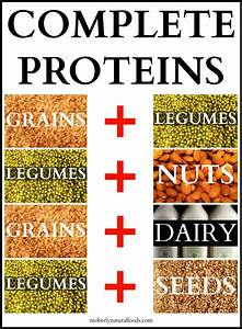 Eating Enough Protein To Build Muscle For Vegetarians