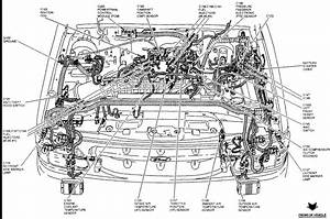 1994 Ford 4 0 Engine Diagram  U2022 Downloaddescargar Com