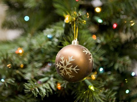 How To Pick The Best Artificial Tree