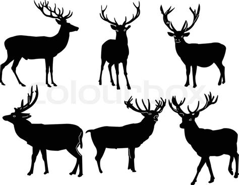 deers collectioneps stock vektor colourbox