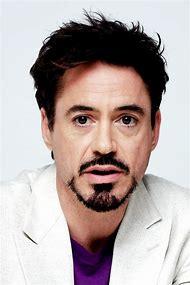 Robert Downey Jr Iron Man Beard