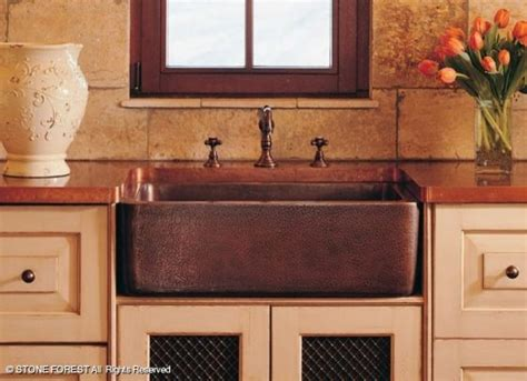 kitchen sinks houston forest farmhouse sinks traditional kitchen 3015