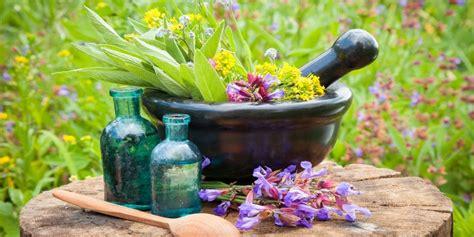 curarsi con i fiori floriterapia curarsi con i fiori 232 possibile