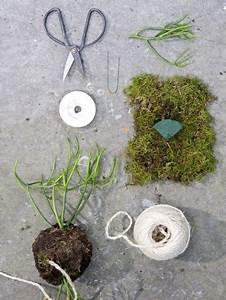 Kokedama Selber Machen : diy gestalte dein eigenes kokedama gardening string garden garden und succulents garden ~ Orissabook.com Haus und Dekorationen