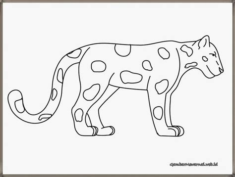 Coloring Harimau by 55 Best Images About Gambar Mewarnai On