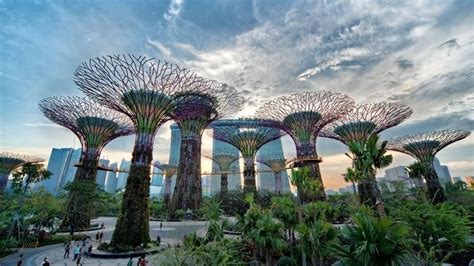 Gardens By The Bay Singapore E-ticket, Book & Pay Online
