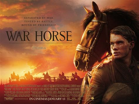 war horse still hours those want wandering horses