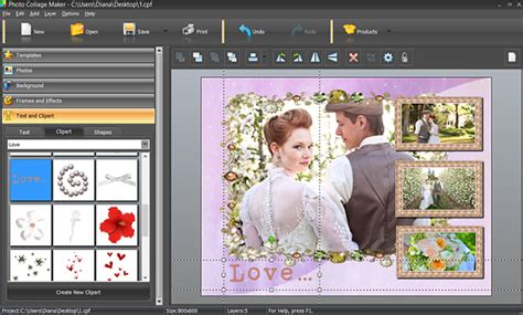 Family Photo Collage Ideas & Beautiful Samples