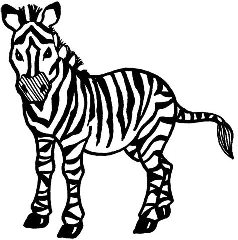 zebras coloring pages learny kids