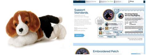 service dogemotional support system   broken