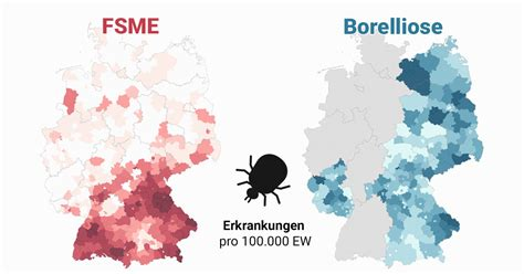 zecken atlas  wo sich zecken  deutschland festsaugen
