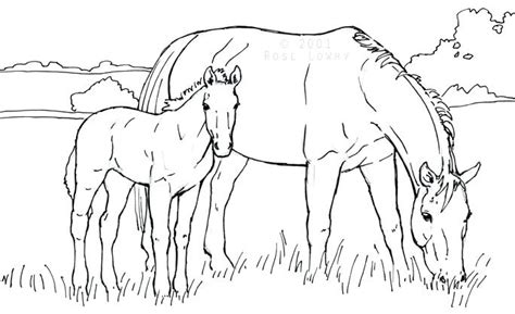 mare  foal coloring pages  getcoloringscom  printable colorings pages  print  color