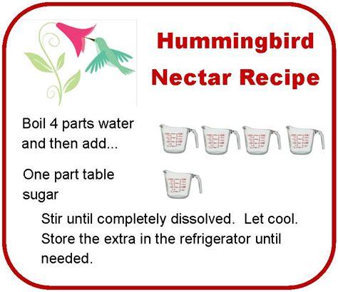 hummingbird food  blackbird diaries