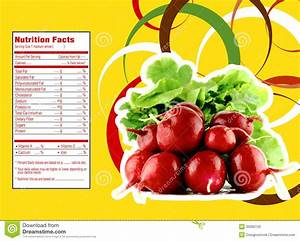 Red Radish Nutrition Facts Stock Vector