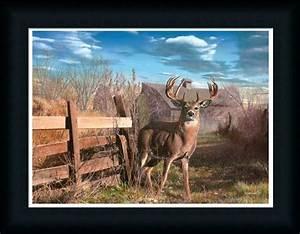 Back Forty Buck by Kevin Deer Barn Landscape Framed Art
