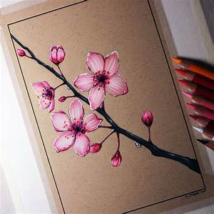 Cherry Blossom Drawing by LethalChris on DeviantArt