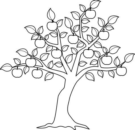 apple tree with roots drawing disegni di alberi da colorare gratis fotogallery donnaclick