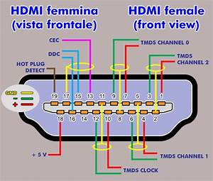 Hdmi Plug Wiring Diagram Of A