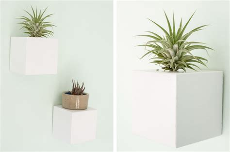 Wall Mounted Plant Stands