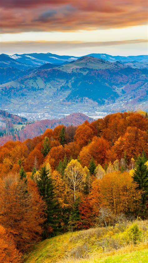 fall mountain fun red orange tree nature papersco