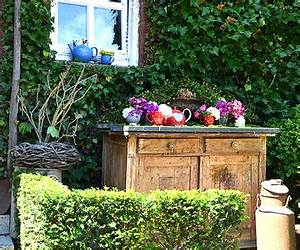 Www Gartentor De : christrosen lenzrosen online magazin zum gartentor ~ Sanjose-hotels-ca.com Haus und Dekorationen