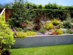 Drought Tolerant Back Yard Landscape Ideas