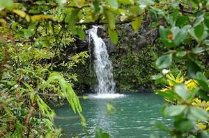 Kleiner Teich Mit Wasserfall : wasserfall im regenwald stockbild bild von klima teich 30000029 ~ Whattoseeinmadrid.com Haus und Dekorationen