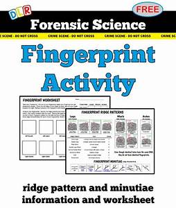 Forensic Science  Fingerprint Diagrams  U0026 Activity