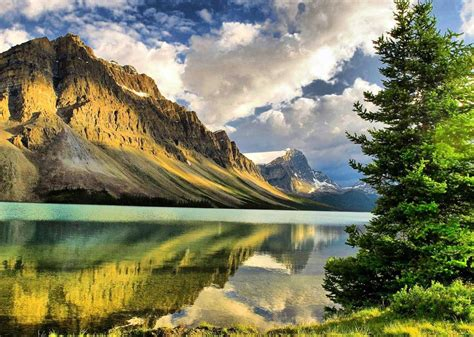 Widescreen Image by Amazing Nature Wallpapers Flowers Widescreen Images