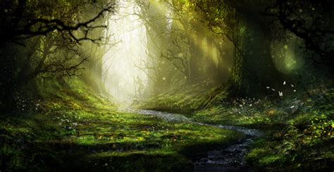 tree of rings enchanted forest by aeflus on deviantart