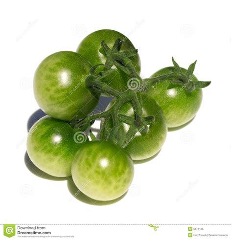 cuisiner des tomates vertes tomates vertes image stock image du brillant légume